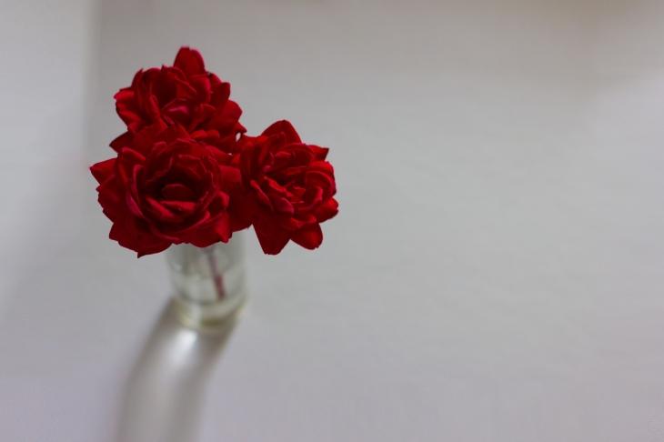 rosefreespace